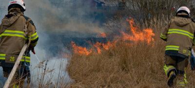 Risk för gräsbrand i halva Sverige