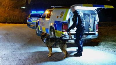 Polisen larmades om försök till inbrott i Strandnorum