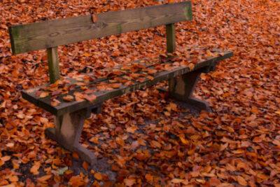 Godmorgon STO  - Söndag 17 Oktober
